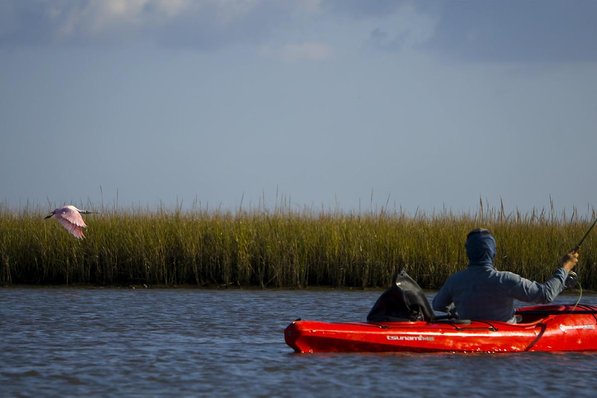 Kayak Fly Fishing Louisiana Redfish