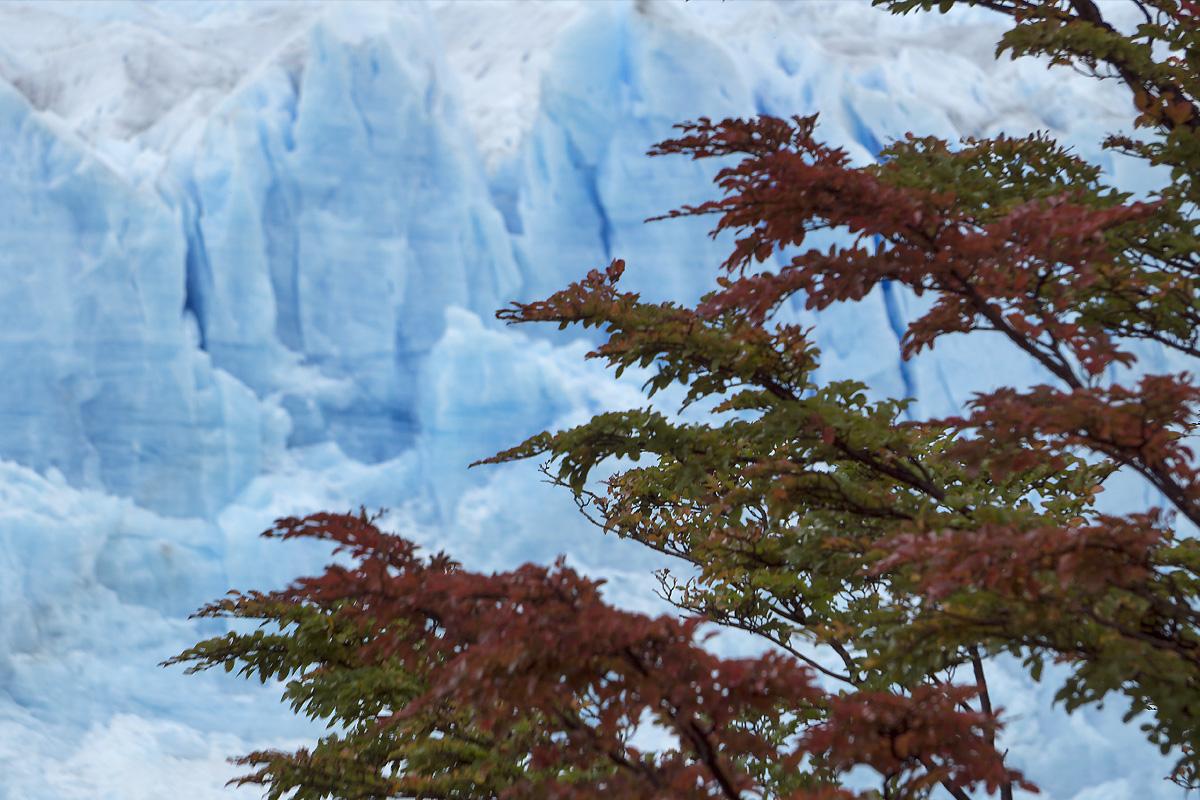 Glaciar Perito Moreno Patagonia Argentina