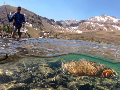 Fly Fishing Colorado Cutthroat