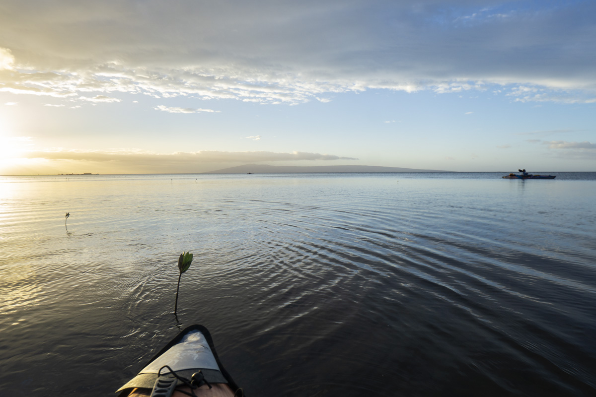 Sight Casting to Molokai Bonefish