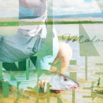 Unfinished Business Chasing Molokai Bonefish with kayaks and fly rods