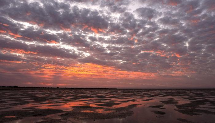 western australia fly fishing road trip exmouth gulf sunset