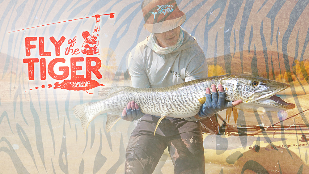 Fly Fishing Video Utah Tiger Muskie